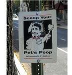 Poop-Scooping