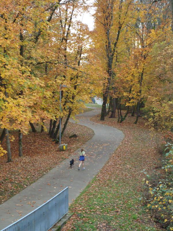 Autumn Jogger