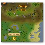 Location of Tropical Wagtail in Runescape