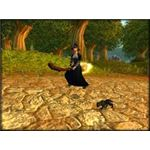Broomstick Mount