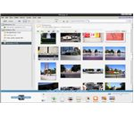 Picasa main program window