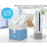 Wii Remocon Storage Accessory
