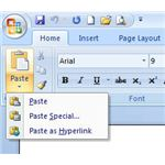 Paste Special Option in Word
