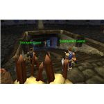 The Stockade Instance