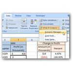 Scenario Manager in Excel 2007