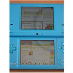 Nintendo DSi Web Browser