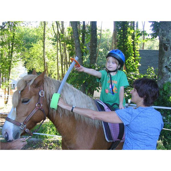 hippotherapy and cerebral palsy Hippotherapy for cerebral palsy is a tool used by physical, occupational and speech therapists that uses the natural movement of horses as part of an integrated program to improve the.