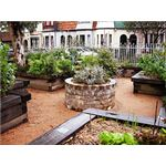 Raised Beds by digika