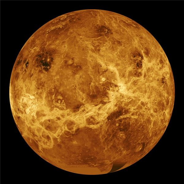 Unveiled Beauty, Venus