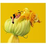 Baby Bumblebee on Pumpkin Flower by Anne Geddess