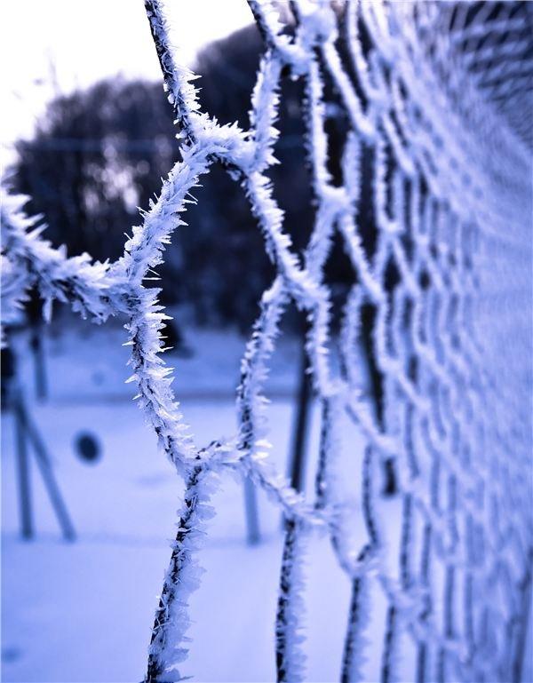 Winter Crystals