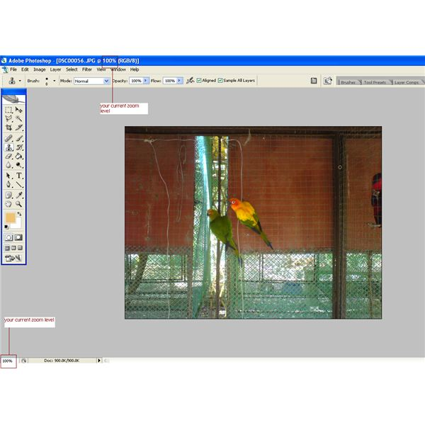 How to zoom in out of images in photoshop including helpful 100 zoom level ccuart Image collections
