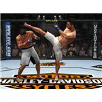 UFC 2009 Undisputed basic fighting elements