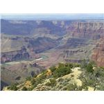 800px-Grand Canyon landscape