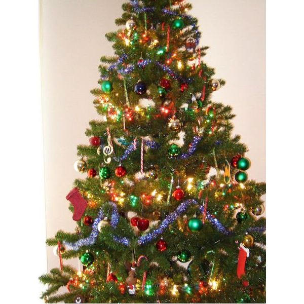 Disposing Of Christmas Trees: Tips For Recycling Christmas Lights