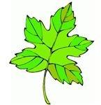 http://www.hasslefreeclipart.com/clipart_garden/leaf2.html
