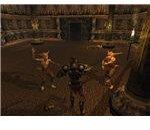 ES3: Morrowind screenshot