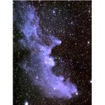 The Witchhead Nebula shows the characteristic blue of reflection nebulae