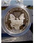 U.S. Silver Eagle Coin
