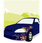 Custom Grapics on Car by Designistdream