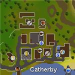 catherby fishing guide