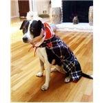 recycle umbrellas,umbrella dog coats