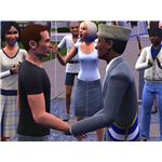 Your sim will receive a key to the city at an award ceremony when reaching level 10.