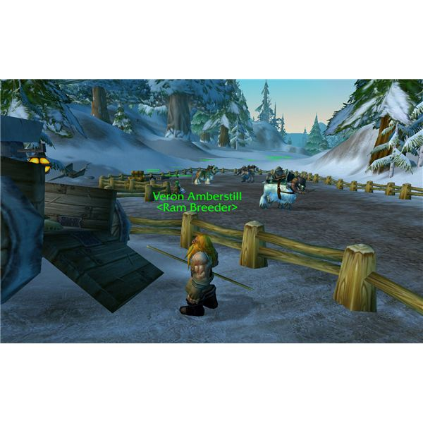 Camping Quartermaster: Guide To Reaching Exalted With Alliance Factions In World