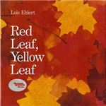 Red Leaf Yellow Leaf