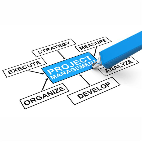 the top benefits of project management project management