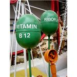 vitamin b12 by emily thorson google images flickr