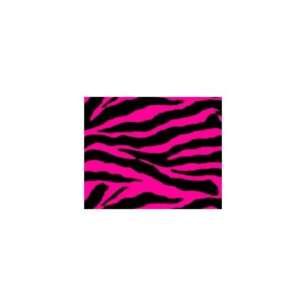 Brilliant Pink and Black Zebra Print Background 600 x 600 · 18 kB · jpeg