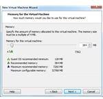 VM Memory Allocation