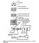 SEM schematic img