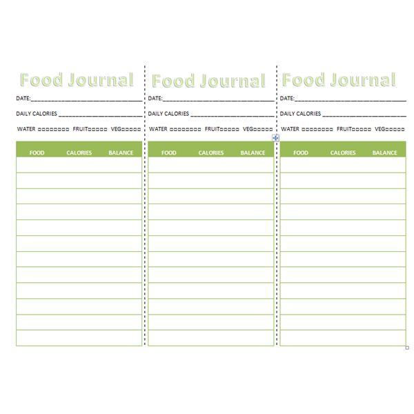 Purse Or Pocket Food Journal  Calorie Diary Template