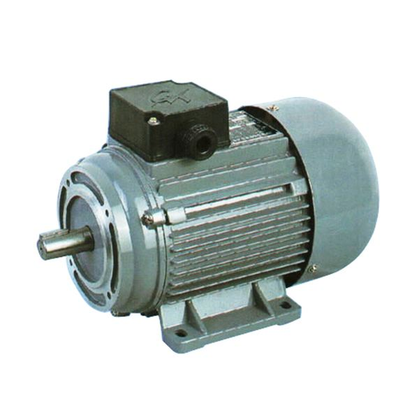 Electrical motors and motor controls Electric ac motors