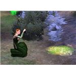 The Sims Medieval gathering leeches