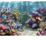 sim-aquarium