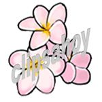 Clips Ahoy Summer Flowers