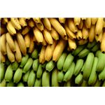 bananas for allergy relief