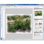 Painter Photo Essentials 4