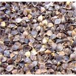 buckwheat hulls small