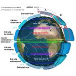 Earth Global Circulation CAT