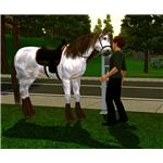 The Sims 3 horse nuzzling owner