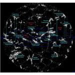 Superclusters Atlas of the Universe