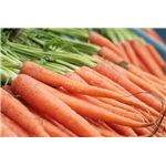Carrots - One of the Best Fiber-Rich Foods That Prevent Bad Breath