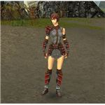 Guild Wars Warrior Kryta Armor