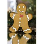 Gingerbread Man Reading Lesson