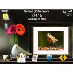 FREE Flower and Little Cute Bird on the Desk Theme-pic
