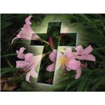 religious-easter-wallpaper-eastercrosswithflowers